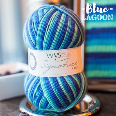signature 4 ply 831 blue lagoon