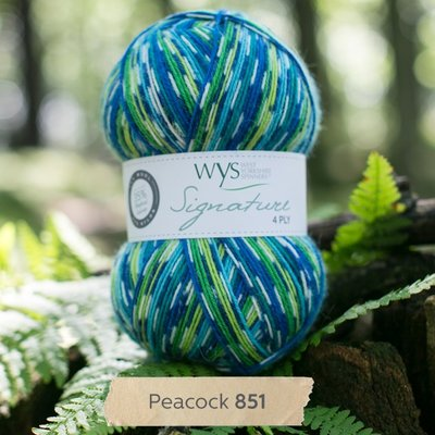 signature 4 ply 851 peacock