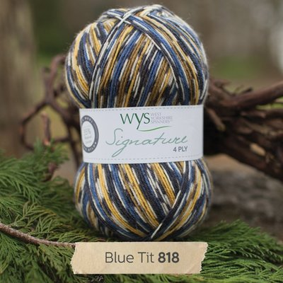 signature 4 ply 818 blue tit