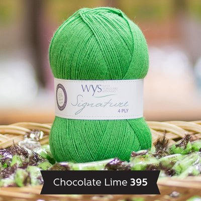 signature 4 ply 395 chocolate lime