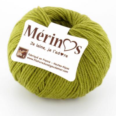 Mérinos lichen