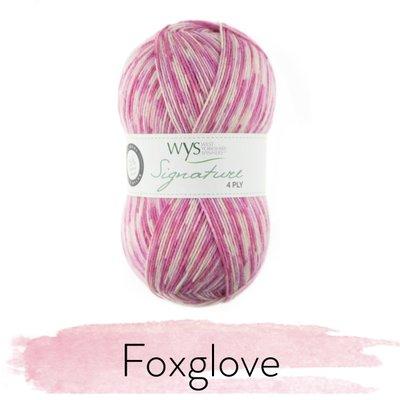 signature 4 ply foxglove 802