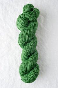 Chicadee parsley