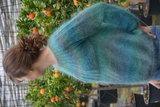Breipatroontje voor Leeuw trui_