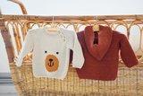 breipatroontje mijn eerste raglan trui met berensnoetje_