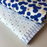 wit met blauw lijntjes - plumetis_