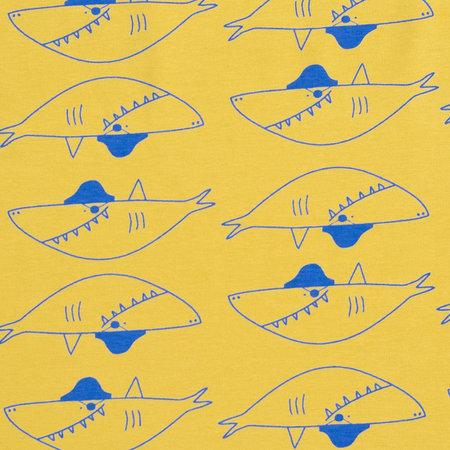 haai geel - jersey