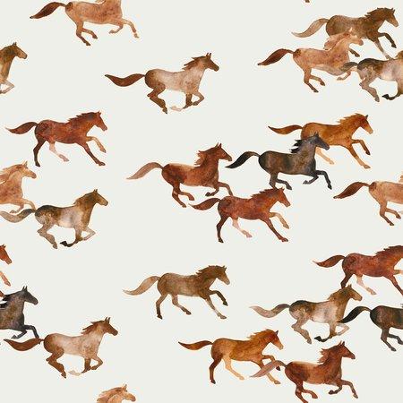 wild horses - jersey