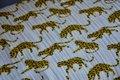 luipaard op witte achtergrond  - double gauze